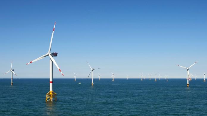 Viele Windräder stehen im Meer